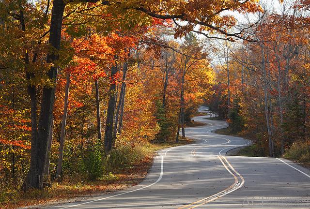 Road to Northport - Door County, WI